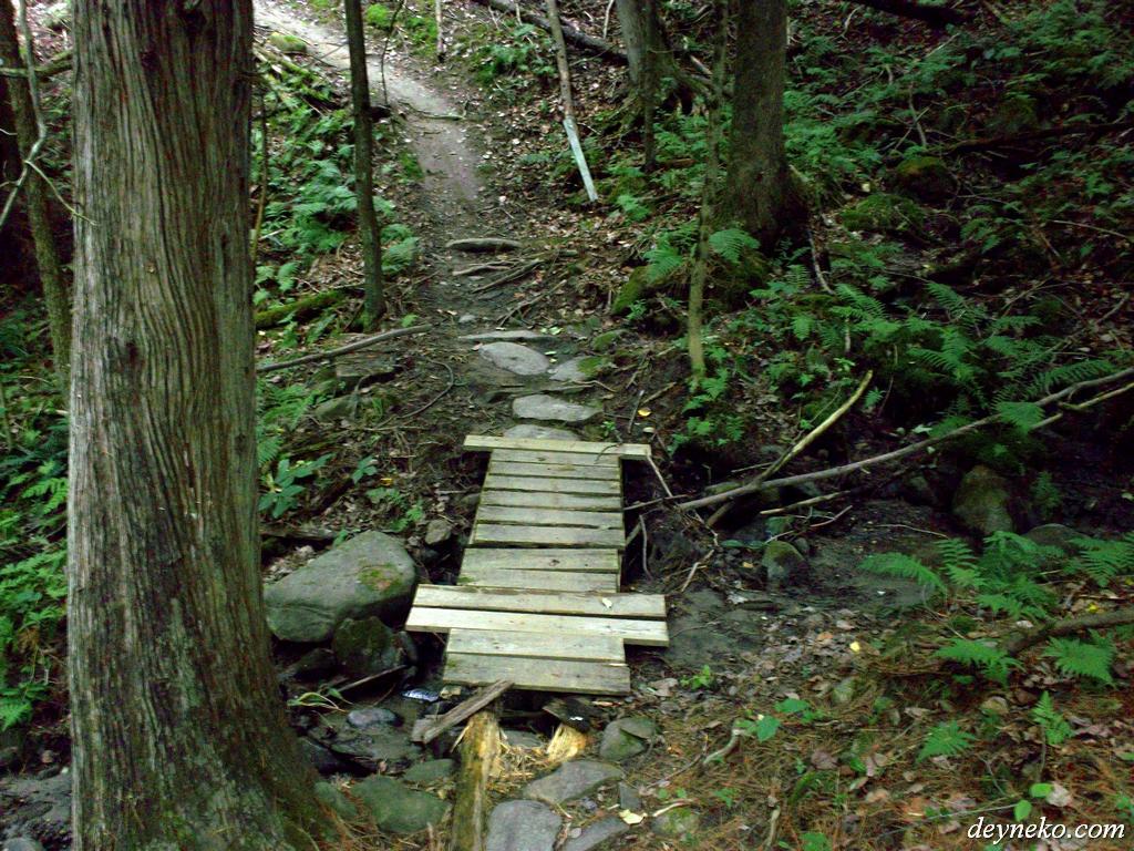 Pont traverse le rivière sur les pistes à vélo