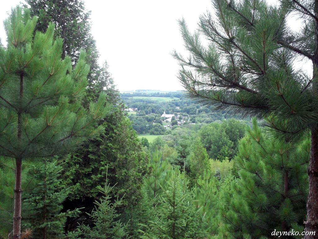 Paysage au sommet de la montagne