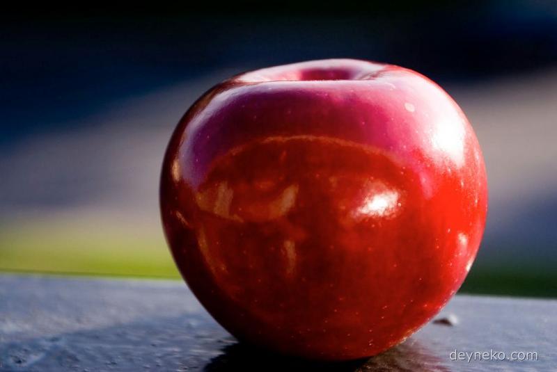 Le voyage aux pommes