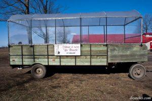 Добыча кленового сока или экскурсия в «Сахарный домик»