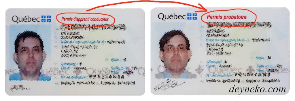 практический экзамен на водительские права канаде монреале