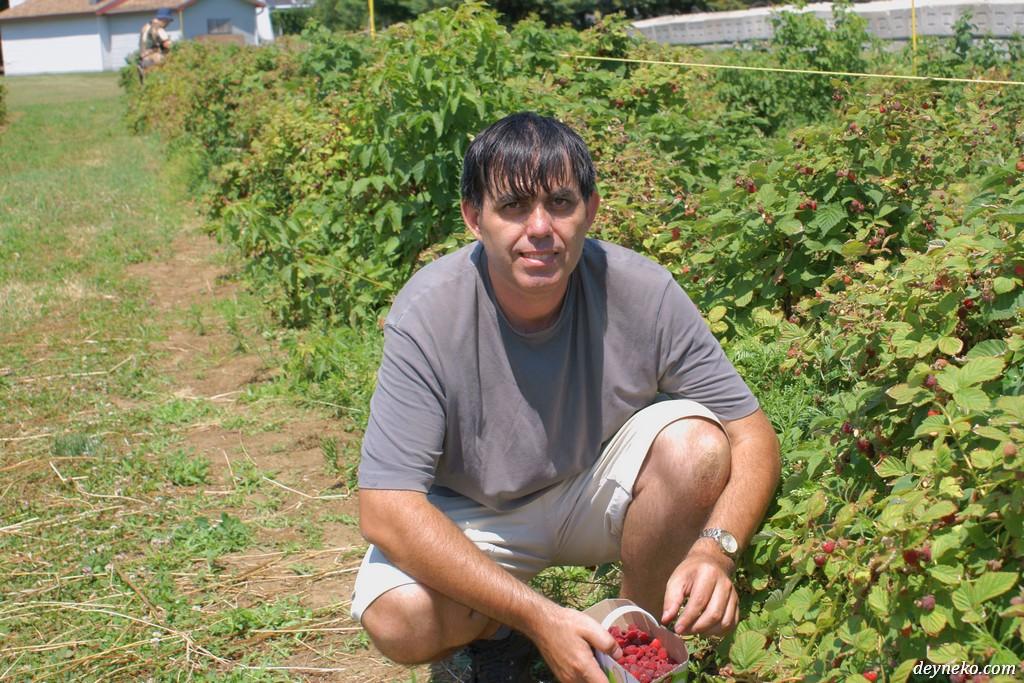 Я на ягодной ферме вблизи Монреаля
