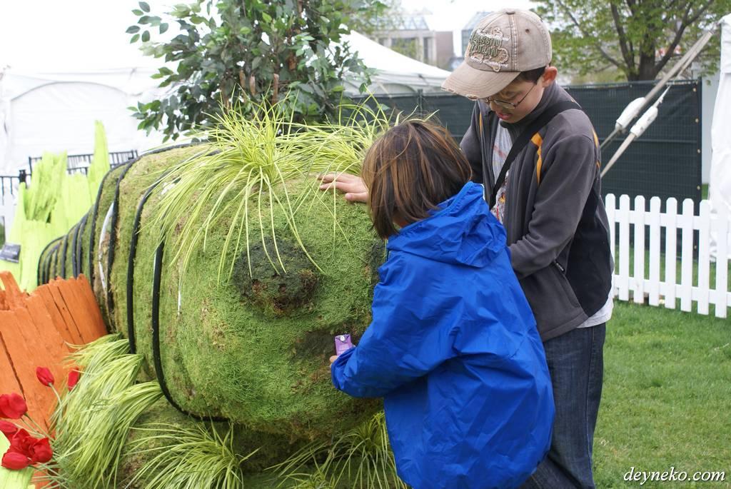 гигантская гусеница на фестивале тюльпанов