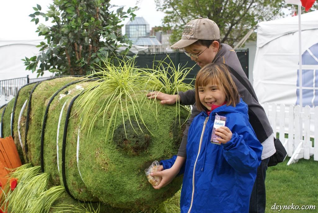 кормить гигантскую гусеницу