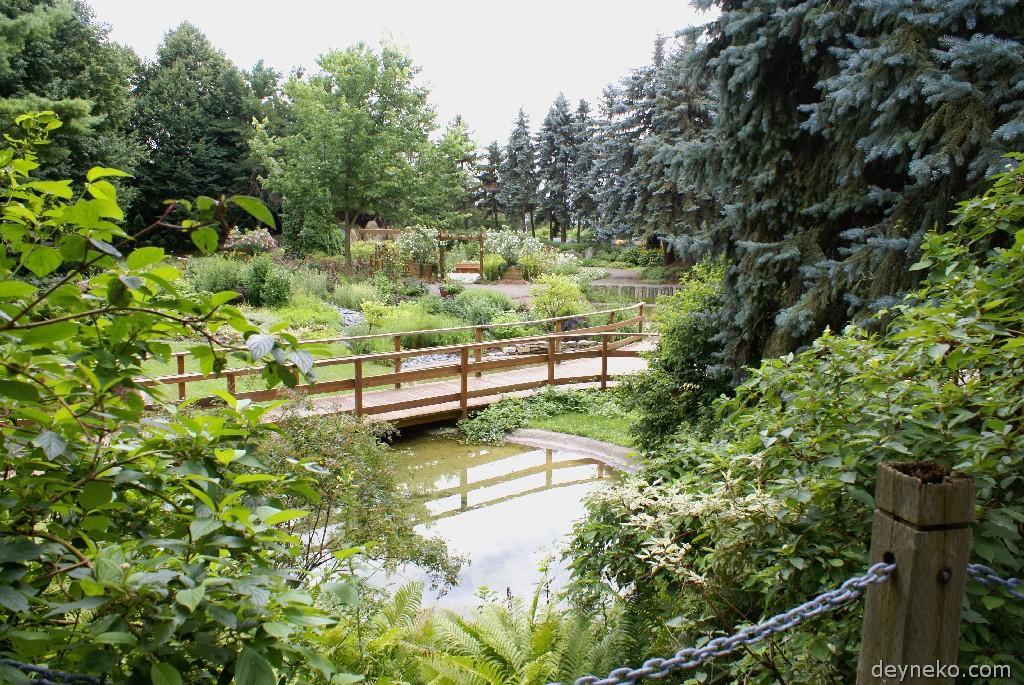 Сад канады