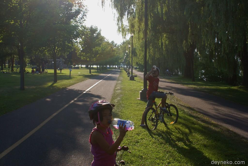 велопоездка по парку